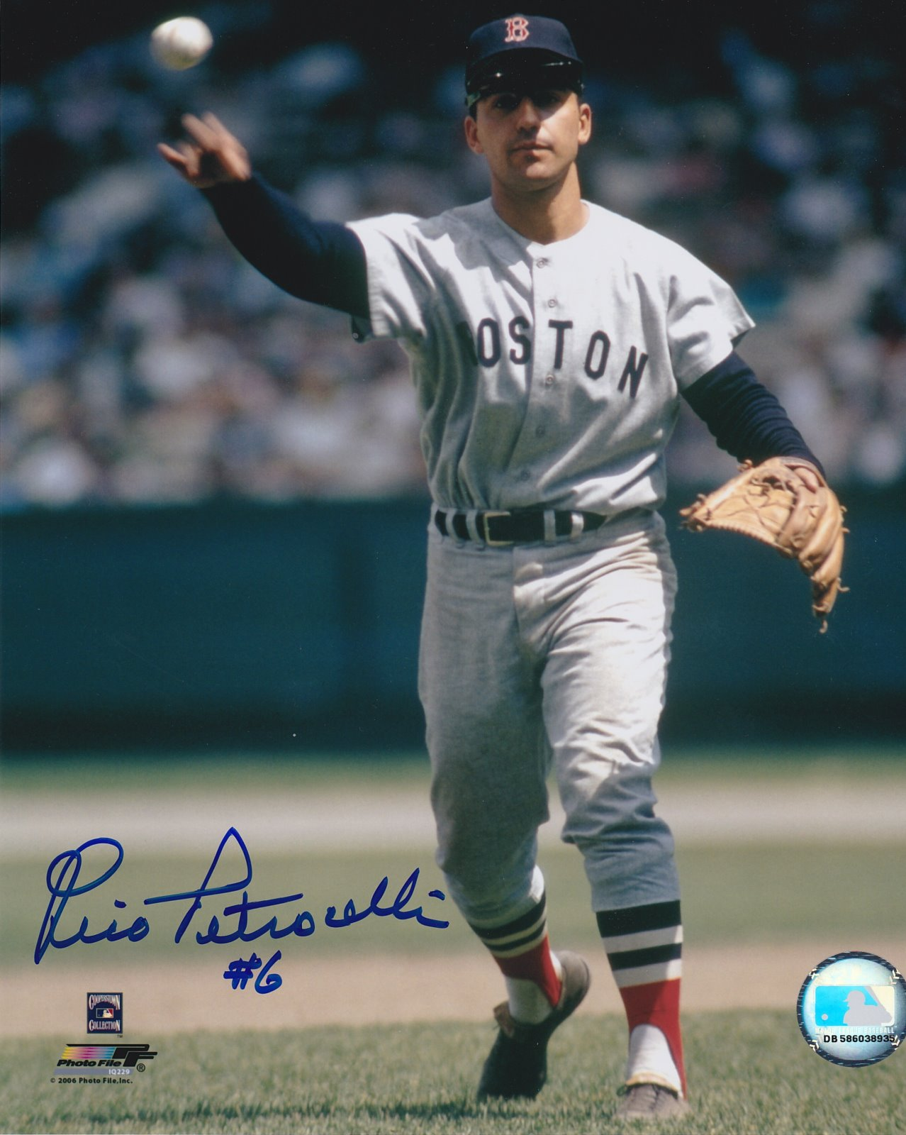 Rico Petrocelli Autograph 8x10 Color photo Boston Red Sox