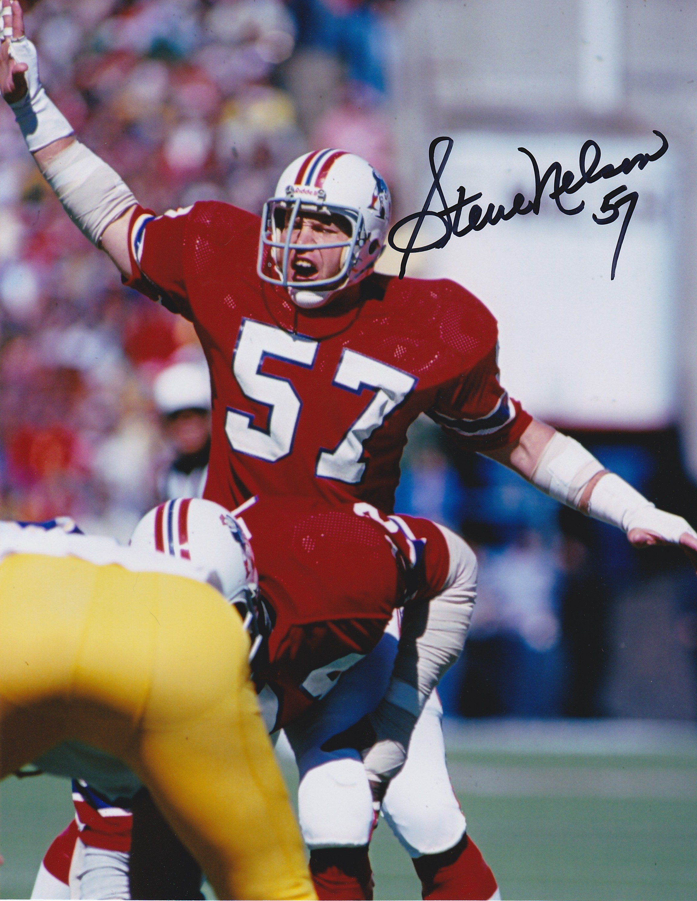 Steve Nelson Autograph 8x10 Color photo New England Patriots